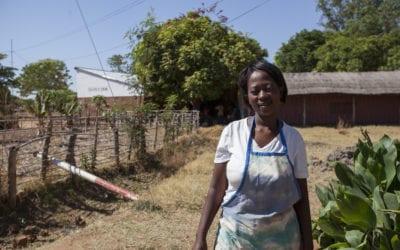 Tough times hit families in Zambia