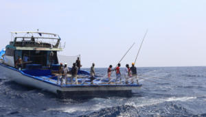 One-by-one tuna fishing, Madlives