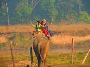 Eephant riding, Chitwan National Park, Nepal